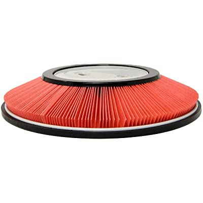 Luber-finer AF7825 Heavy Duty Air Filter: Automotive