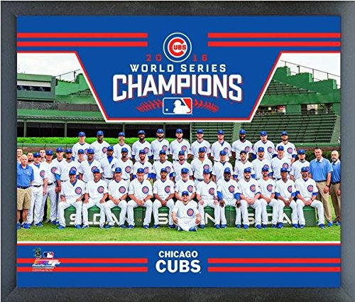 Chicago Cubs 2016 World Series Champions Team Photo (Size: 17