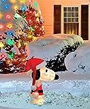 ProductWorks 24-Inch Pre-Lit 3D Peanuts Santa