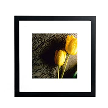Amazoncom 12x12 Picture Frames Made To Display 8x8 Pictures With