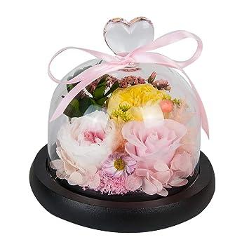Amazon.com: Sanran preservada rosa hecha a mano diseño ...