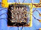 Amscope SM-2TZ-M Digital Professional Trinocular
