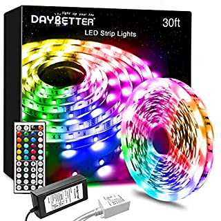 DAYBETTER Led Strip Lights 30ft with 44 Keys IR Remote and 12V Power Supply Flexible Color Changing 5050 RGB Led Lights for Bedroom, Kitchen,DIY Decoration