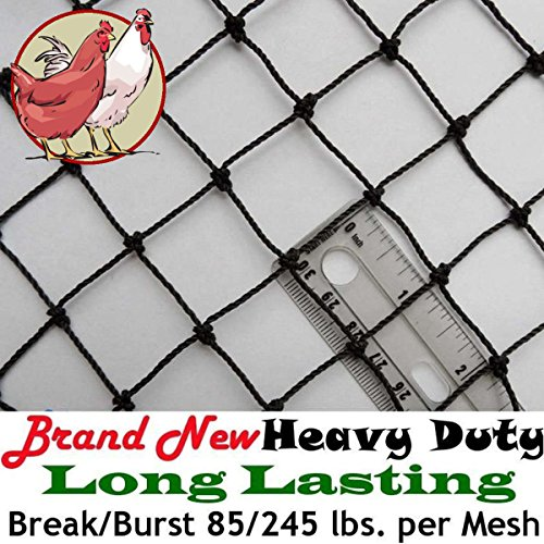 Poultry Netting 50' x 50' Heavy Knotted 1
