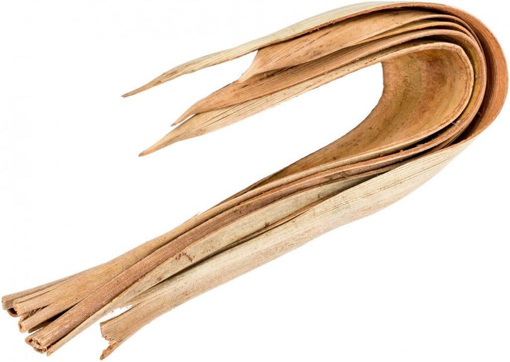 NaDeco Kokosblatt Mini Galera 5 St/ück Gebogene Palmenbl/ätter Kokos Blatt gebogen Kokosboote