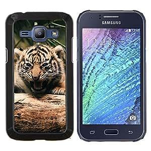EJOOY---Cubierta de la caja de protección para la piel dura ** Samsung Galaxy J1 J100 ** --Tigre lindo bebé
