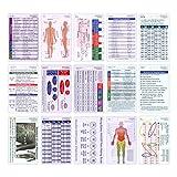 Comprehensive Vertical Badge Card Reference Set - 27 Cards