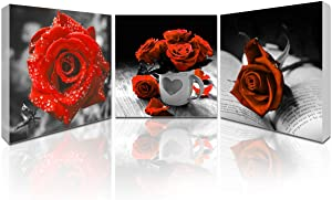Canvas Wall Art for Living Room Red Rose Pictures Wall Decor 3 Panels Flowers Pictures Prints Black and White Painting Modern Florals Framed and Stretched Artwork for Bedroom Bathroom Ready to Hang