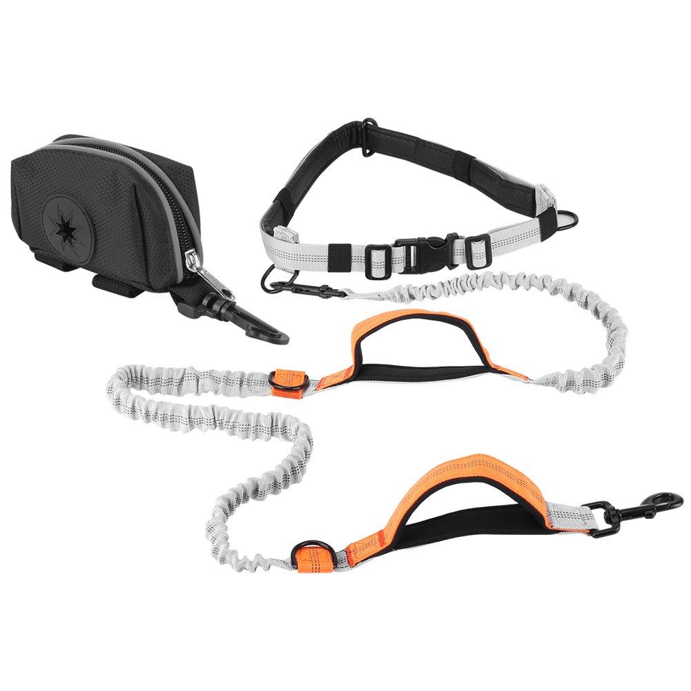 3 Pet Dog Leash, 3pcs Set Elastic Lead Strap + Waist Belt + Small Bag for Running Walking( 3)