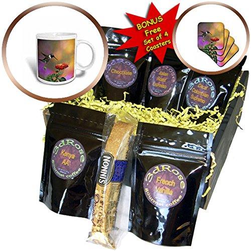 3dRose Danita Delimont - Hummingbird - Ruby-throated Hummingbird male at Dallas Red Lantana - Coffee Gift Baskets - Coffee Gift Basket (cgb_250980_1)