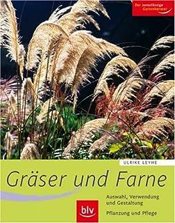 Gräser im Garten: Gestaltungsideen, Pflanzenporträts und Pflege ...