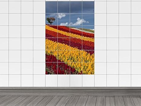 Piastrelle adesivo piastrelle immagine fiori prato estate natura