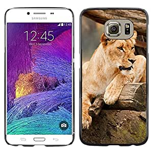 Print Motif Coque de protection Case Cover // M00315139 // Samsung Galaxy S6 (Not Fits S6 EDGE)