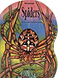 img - for Misunderstood: Spiders book / textbook / text book