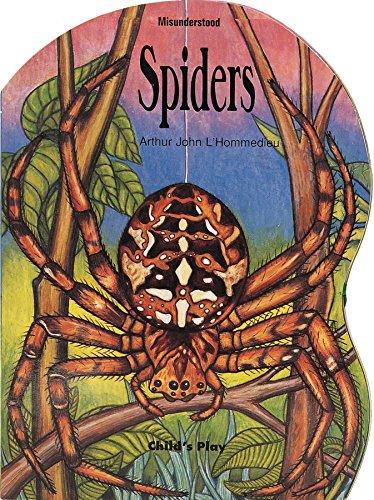 Misunderstood: Spiders