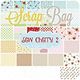 Sew Cherry 2 Scrap Bag (LH.SC.SB) by Lori Holt for Riley Blake