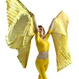 Hand-held Worship Angel Isis Wing, Gold, M-L-Adult