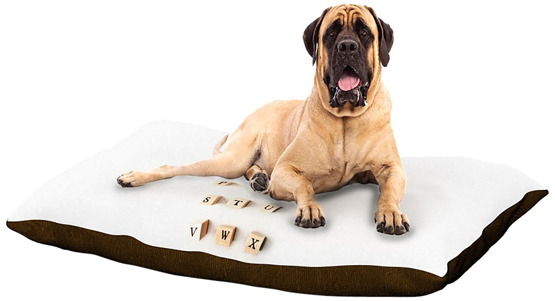 X-Large 40\ Kess InHouse Ingrid Beddoes ABC  Wooden Letters Dog Bed, 50 by 60-Inch