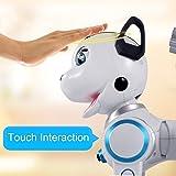 fisca Remote Control Robotic Dog RC Interactive