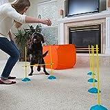 Outward Hound ZipZoom Indoor Dog Agility Training
