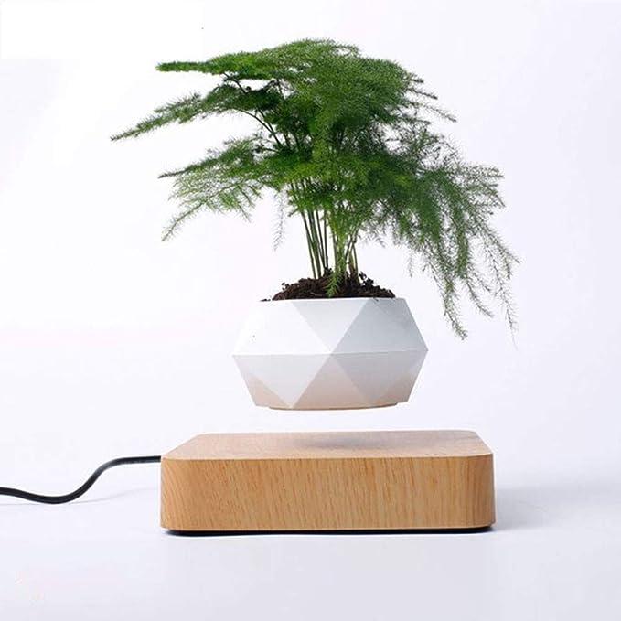 sportuli Floating Pot Plant Magnetic Suspended Hippie Round LED Levitating Indoor Zen Pot