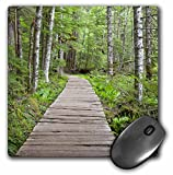 3dRose LLC 8 x 8 x 0.25 Inches Mouse Pad, Washington, Mt Rainier Np, Trail of The Shadows - Jamie and Judy Wild (mp_96344_1)
