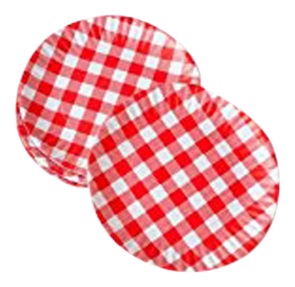 ''What Is It?'' Reusable Red & White Gingham Checkered Picnic / Dinner Plate, 9 Inch Melamine, Set of 4