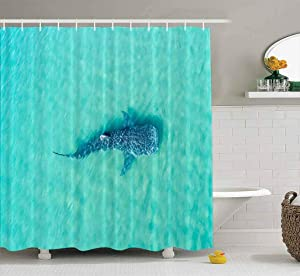 Musesh Shower Curtains,Wide Shower Curtains,78X72 Inch Shower Curtain with Hooks for Bathroom Whale Shark The Biggest Fish in Huge Gentle Swimming Near Surface California Mexico Typus, Ocean, a