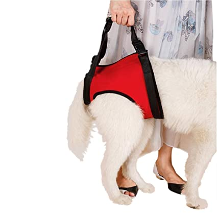 3ce1e0a8a9 Lalawow Dogs Lift Harness Dogs Lift Support Rehabilitation Harness Helping  Support for Elderly or Arthritis Dogs