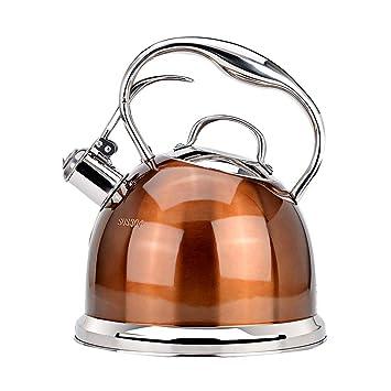 Chen Silbato Hervidor Cocina de Acero Inoxidable Cocina de inducción Estufa de Gas Gas Vintage Gran Olla Grande Pequeña Tetera Hogar 3L (Color : A): ...