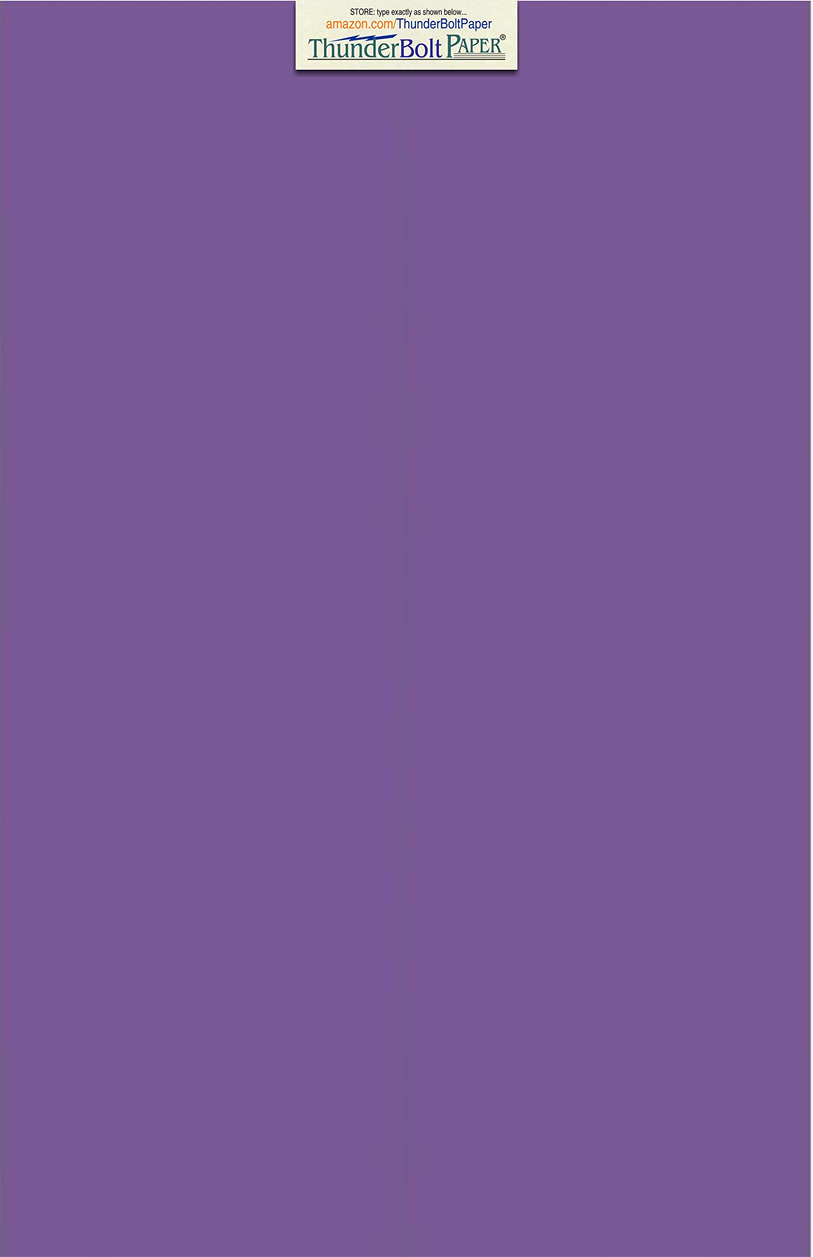 25 Bright Purple Grape 65# Cardstock Paper 11'' X 17'' (11X17 Inches) Tabloid|Ledger|Booklet Size - 65Cover/45Bond Light Weight Card Stock - Bright Printable Smooth Paper Surface by ThunderBolt Paper