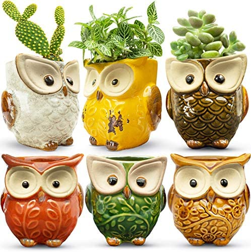 HOMESCAPE CREATIONS Owl Succulent Mini Planter Pot – 2.6 Inch Small Ceramic Glaze Container with Drainage – Tiny Animal Holder for Plants, Flowers, Cactus – Cute Gift Set of 6