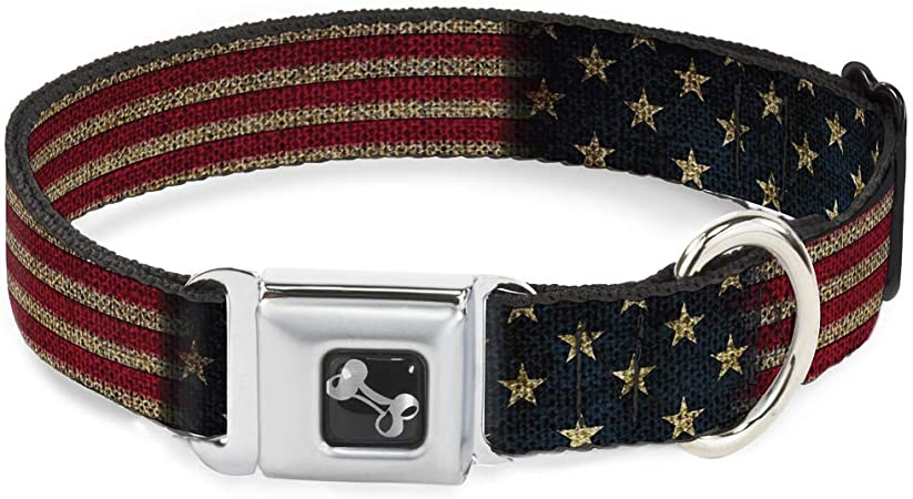 Buckle-Down Seatbelt Buckle Dog Collar