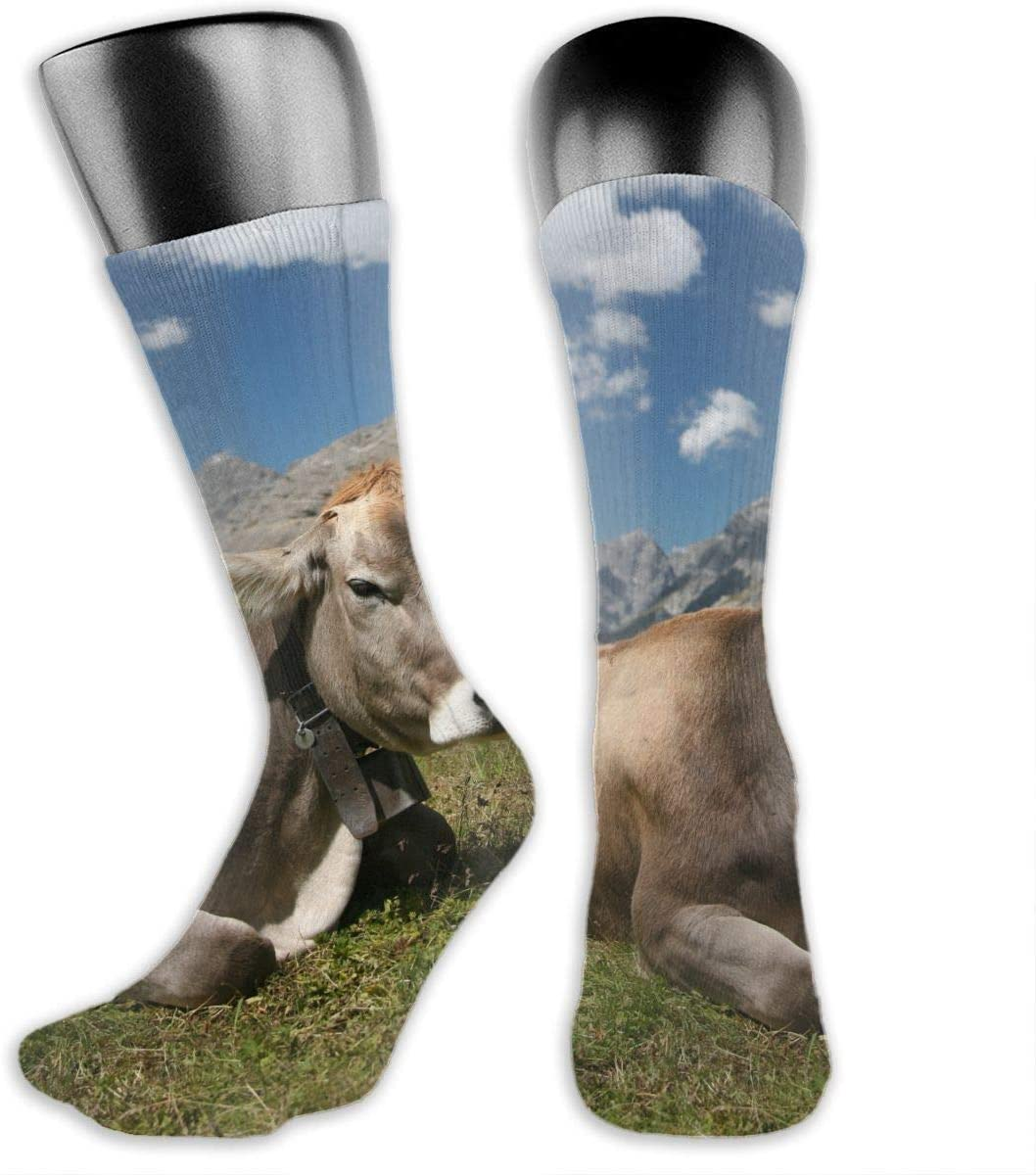 OLGCZM Funny Cow Men Womens Thin High Ankle Casual Socks Fit Outdoor Hiking Trail