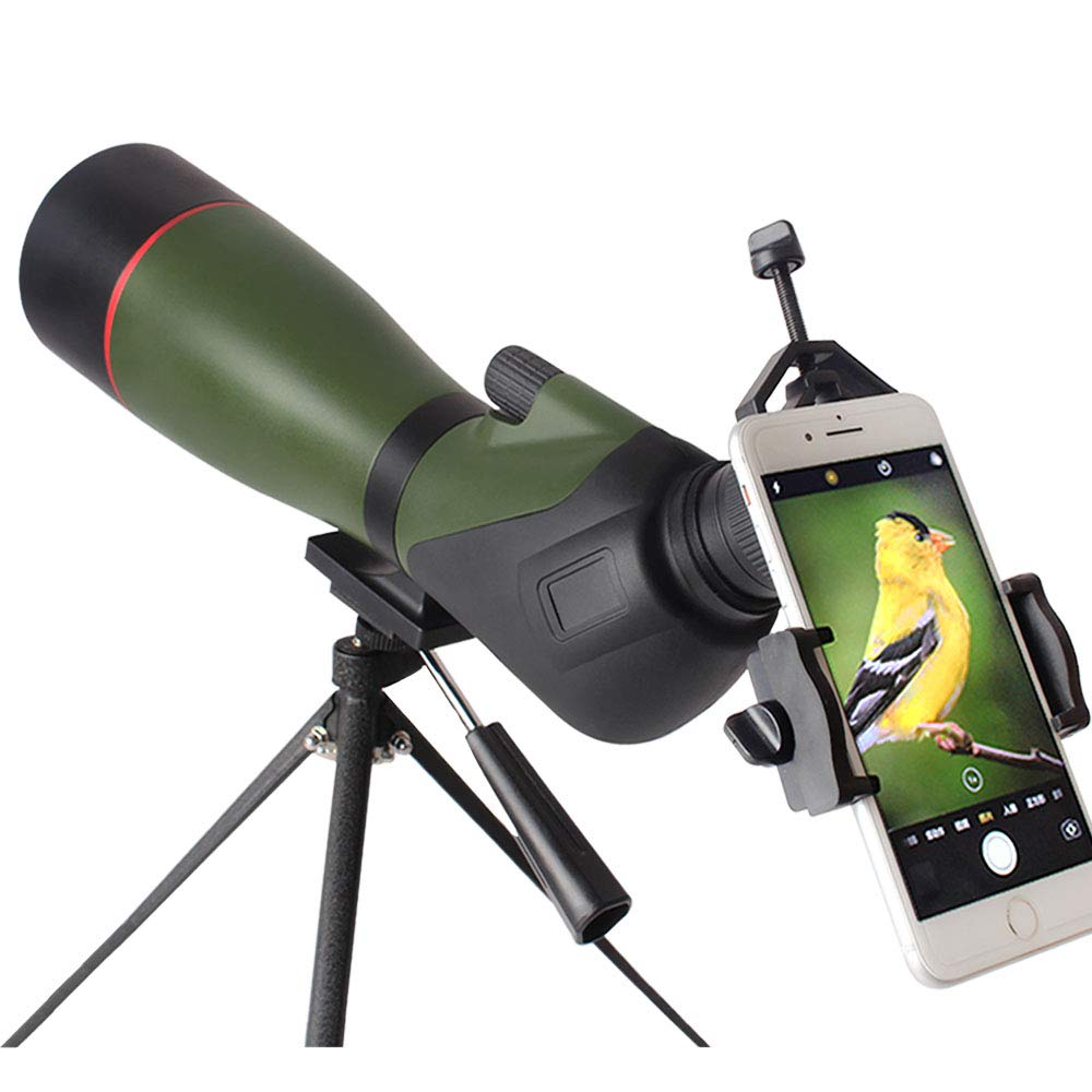 DTF 20-60x80 Spotting Scope with Tripod, Waterproof Spotter Scope for Target Shooting, Birding Scopes with 45 Degree Angled Eyepiece, Carrying Case and Phone Adapter Included by DTF