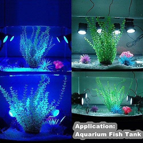 Deckey Waterproof 36 LED Submersible Spotlight Landscape Lamp Aquarium Fish Tank, Garden Fountain, Pond Pool (3 Pack) by Deckey (Image #5)
