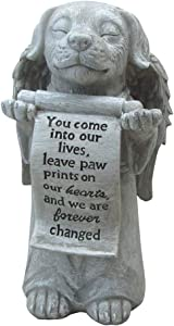 Comfy Hour Pet in Loving Memory Collection 10
