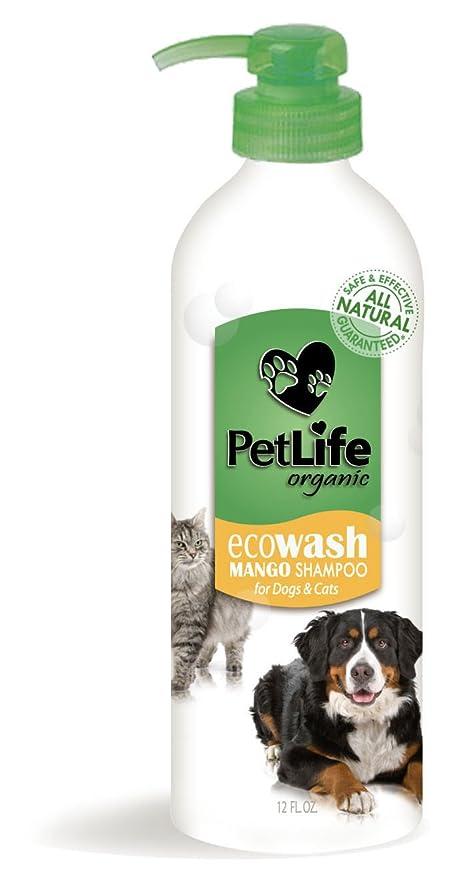 Champú para perros y gatos de Edimash (Mango) (35 ml)