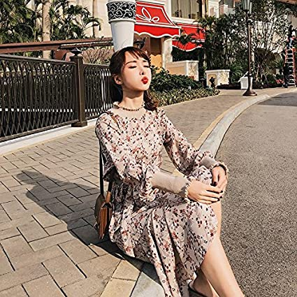 a992732b95b4 Wanglele Thin Dress Spring Women S Half-High Collar Floral Lace With Thin  Female Super Fairy