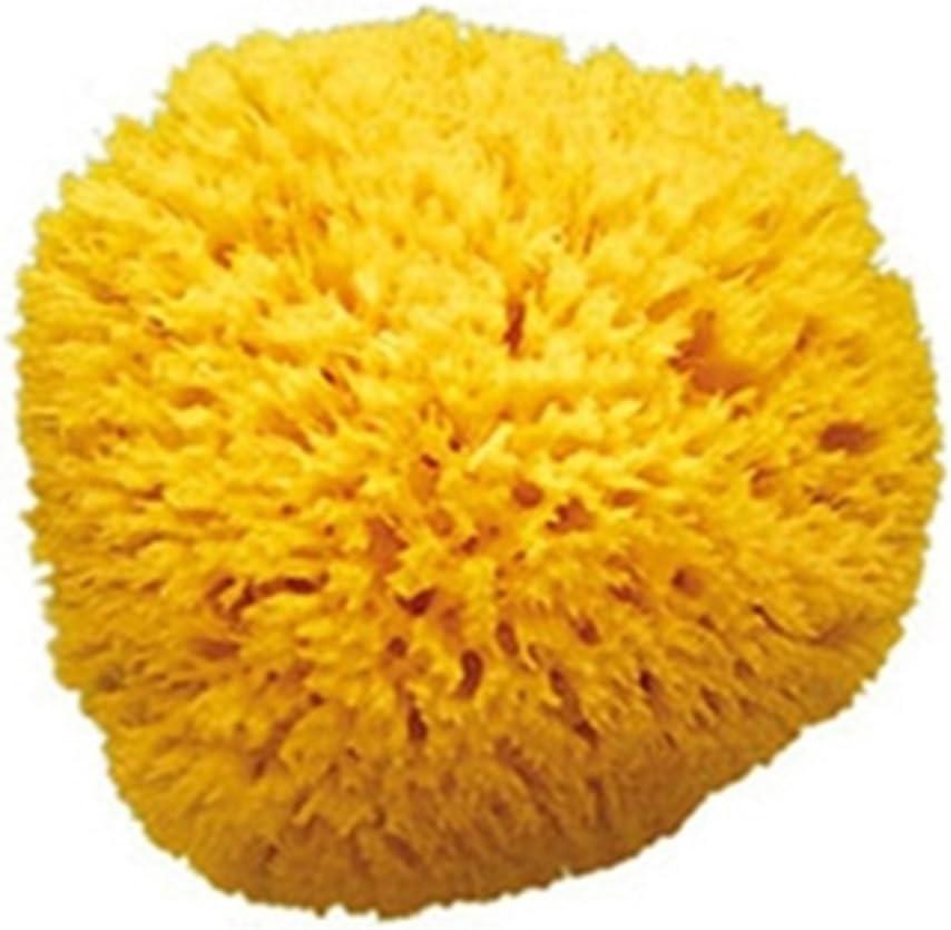 Okbaby Arcipelago Natural Sponges/ /Ladies 14