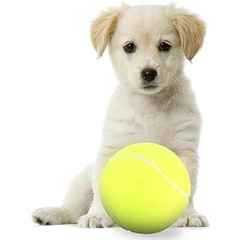 "Pet Supplies : Banfeng Giant 9.5"" Dog Tennis Ball Large"