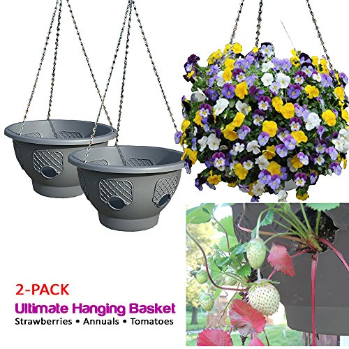 (Ultimate Hanging Baskets - Strawberry, Tomato, Flower, and Herb Outdoor Planters - Use Garden Pots for Growing Plants Outside On A Deck, Fence, or Balcony (2))