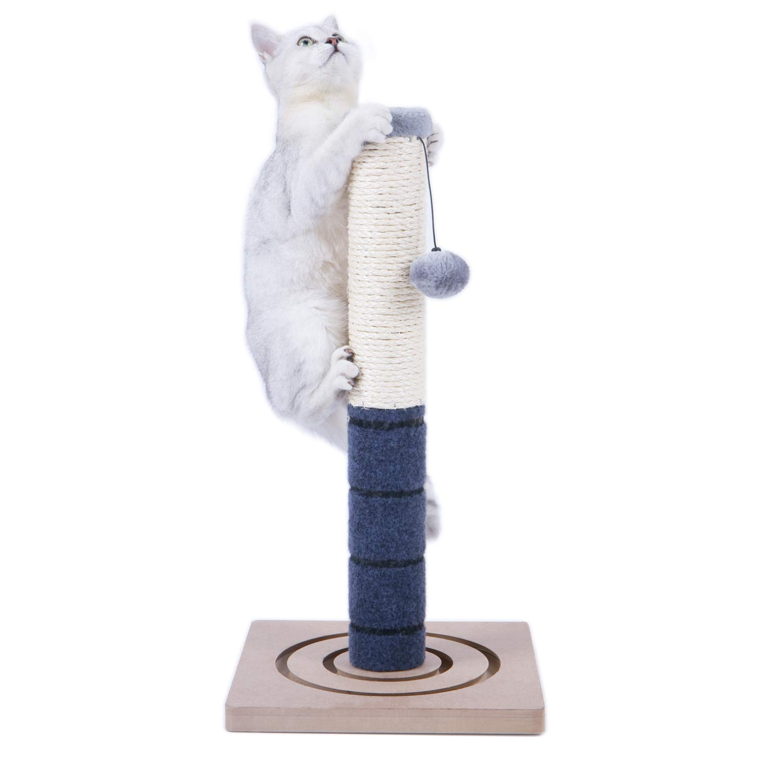 PAWZ Road Cat Scratching Post Cat Interactive Toys - Extra Post and Dangling Ball Included- 22 inches (Navy) by PAWZ Road