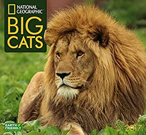 Big Cats 2017 National Geographic Wall Calendar