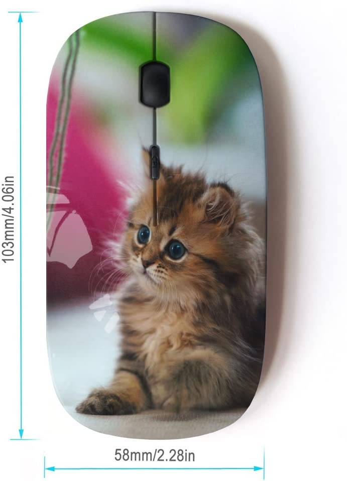 STPlus Cute Kitten Cat Animal 2.4 GHz Wireless Mouse with Ergonomic Design and Nano Receiver