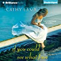 If You Could See What I See Audiobook by Cathy Lamb Narrated by Amy McFadden