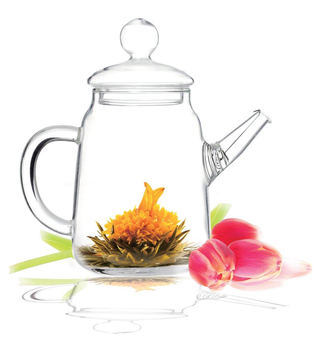 Tea Beyond Heat Resistant Clear Glass Teapot Duo 16-Ounce GTP2001-L