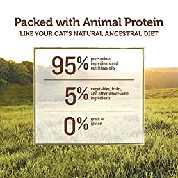 Instinct Grain Free Venison Formula Natural Wet Canned Cat Food by Nature\'s Variety, 5.5 oz. Cans (Case of 12)