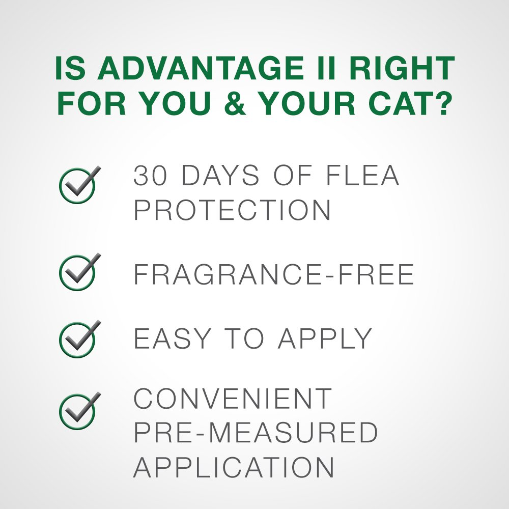 Bayer Advantage II Kitten Flea Treatment for Kittens, 2-5 lb, 4 doses by Bayer Animal Health (Image #5)