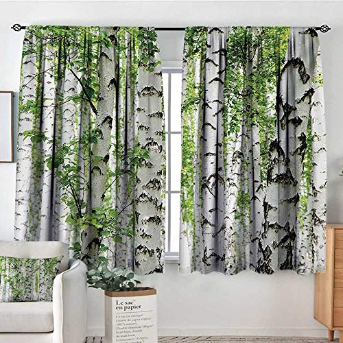 Mozenou Woodland Thermal Insulating Blackout Curtain Birch Trees in The Forest Summertime Wildlife Nature Outdoors Themed Picture Thermal Blackout Curtains 55
